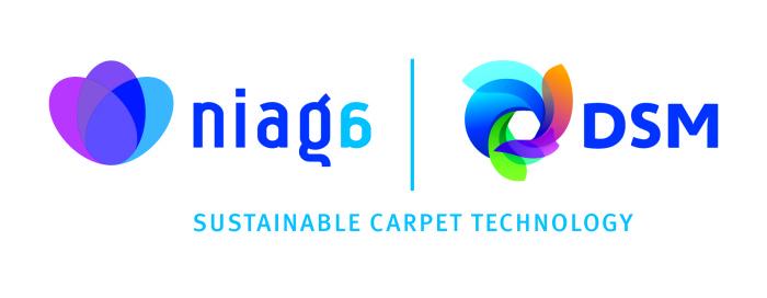 Niaga_DSM-logo_def