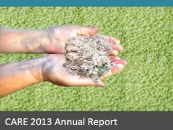 CARE report 2013